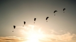 skydiving-and-paragliding-1388636-m