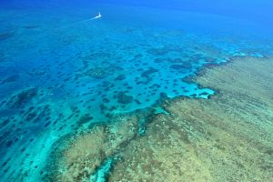 great-barrier-reef-1-506521-m