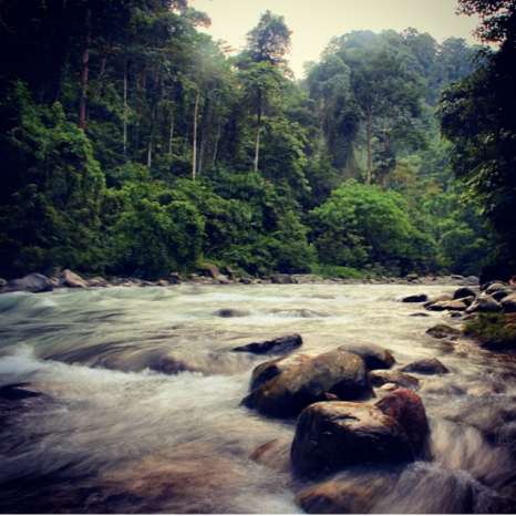Somewhere in Sumatra