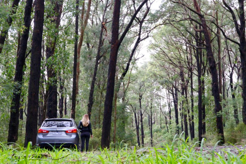 Mitsubishi ASX Little Grey Box Travel Blog Road Trip