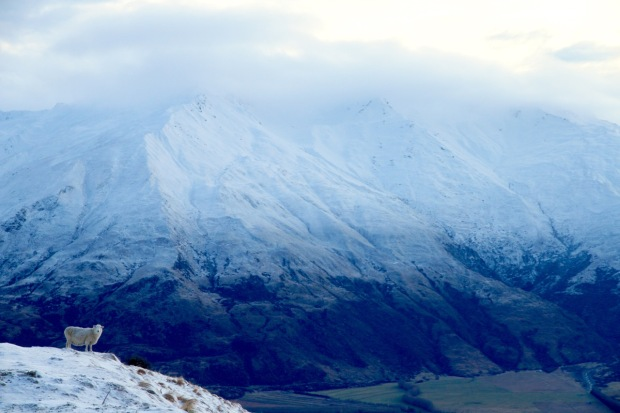 Drive up to Treble Cone Things to do in Wanaka New Zealand Travel Blog