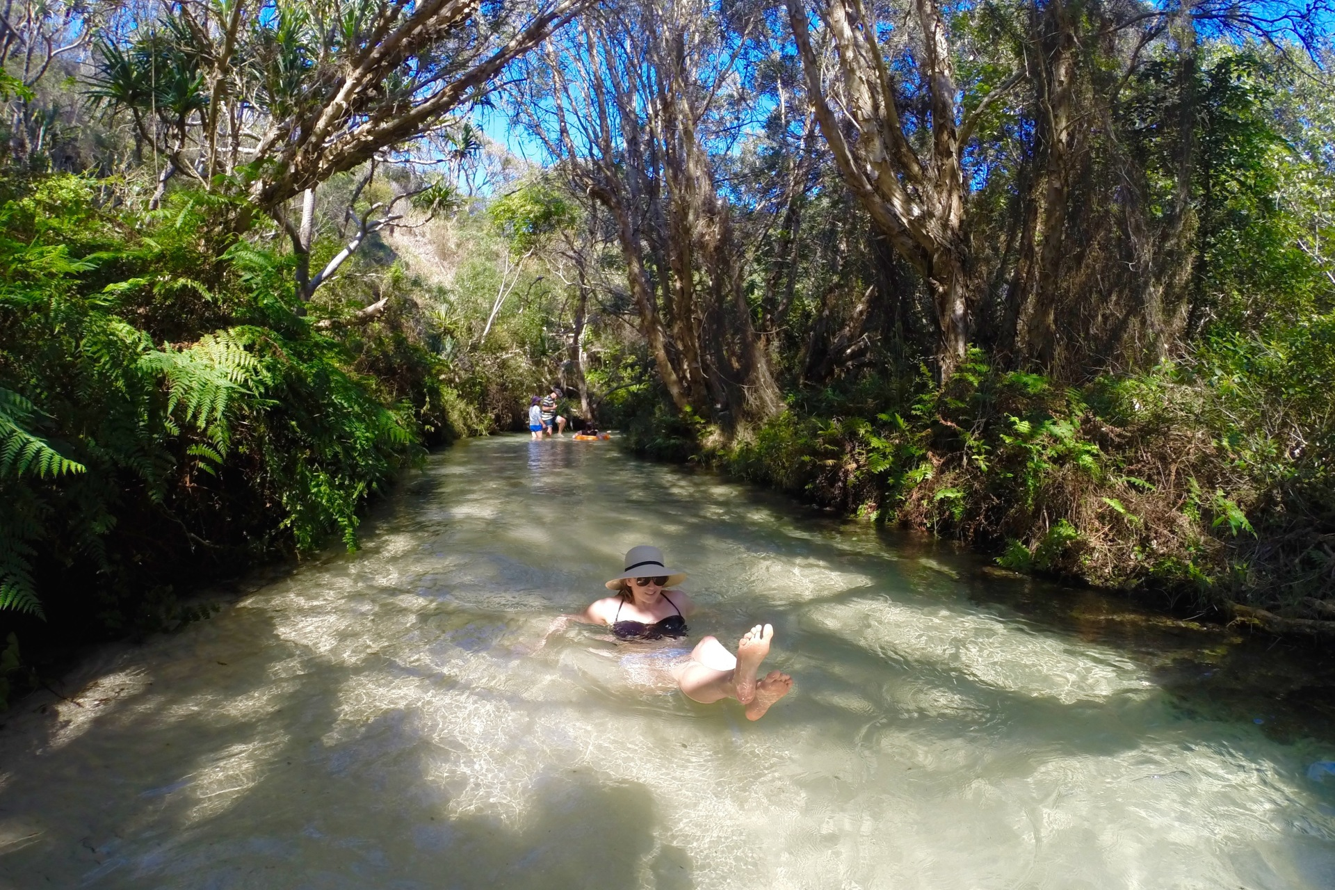 Eli Creek Things to do on Fraser Island Travel Blog Australia Queensland