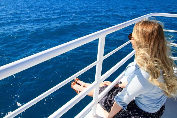 Whale Watching Fraser Coast Discovery Sphere Nemo 14 Reasons you should go whale watching in Hervey Bay Travel Blog