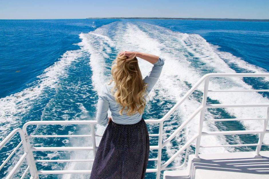 Whale song Cruises back of the boat whale spotting 14 Reasons you should go whale watching in Hervey Bay Travel Blog