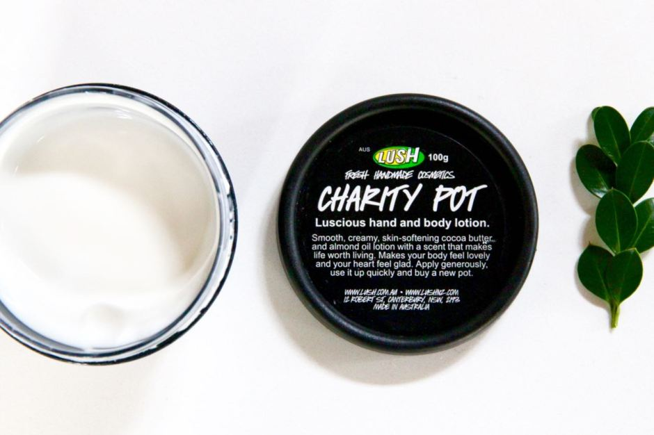 Charity Pot Moisturiser Lush Cosmetics Travel Beauty Essentials Favourites Travel Blog