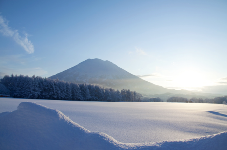 5 reasons to put Niseko on your travel bucket list