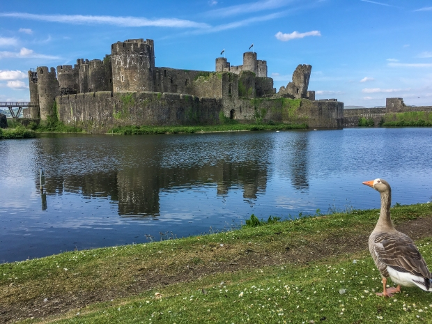 What a view of Caerphilly Castle