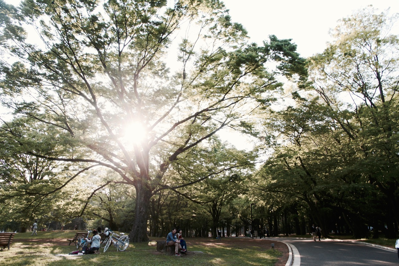 49 Cheap and free things to do in Tokyo