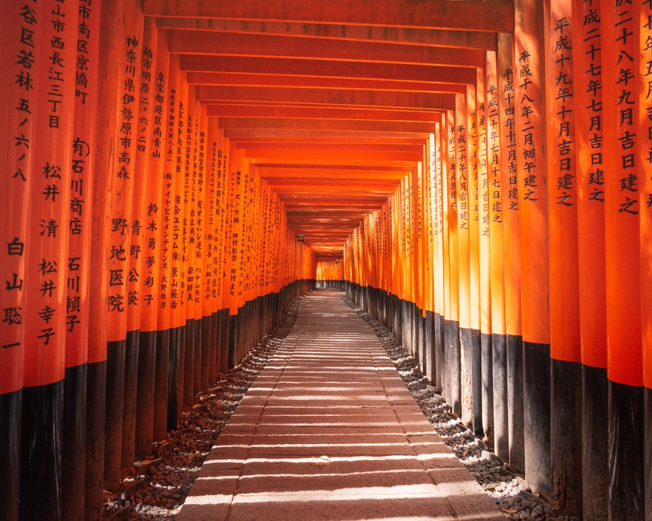 5 Easy tips to save money & plan an amazing Japan trip!