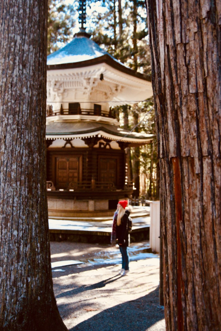 9 Reasons to visit Koyasan in Japan (+ essential travel tips!) - 4