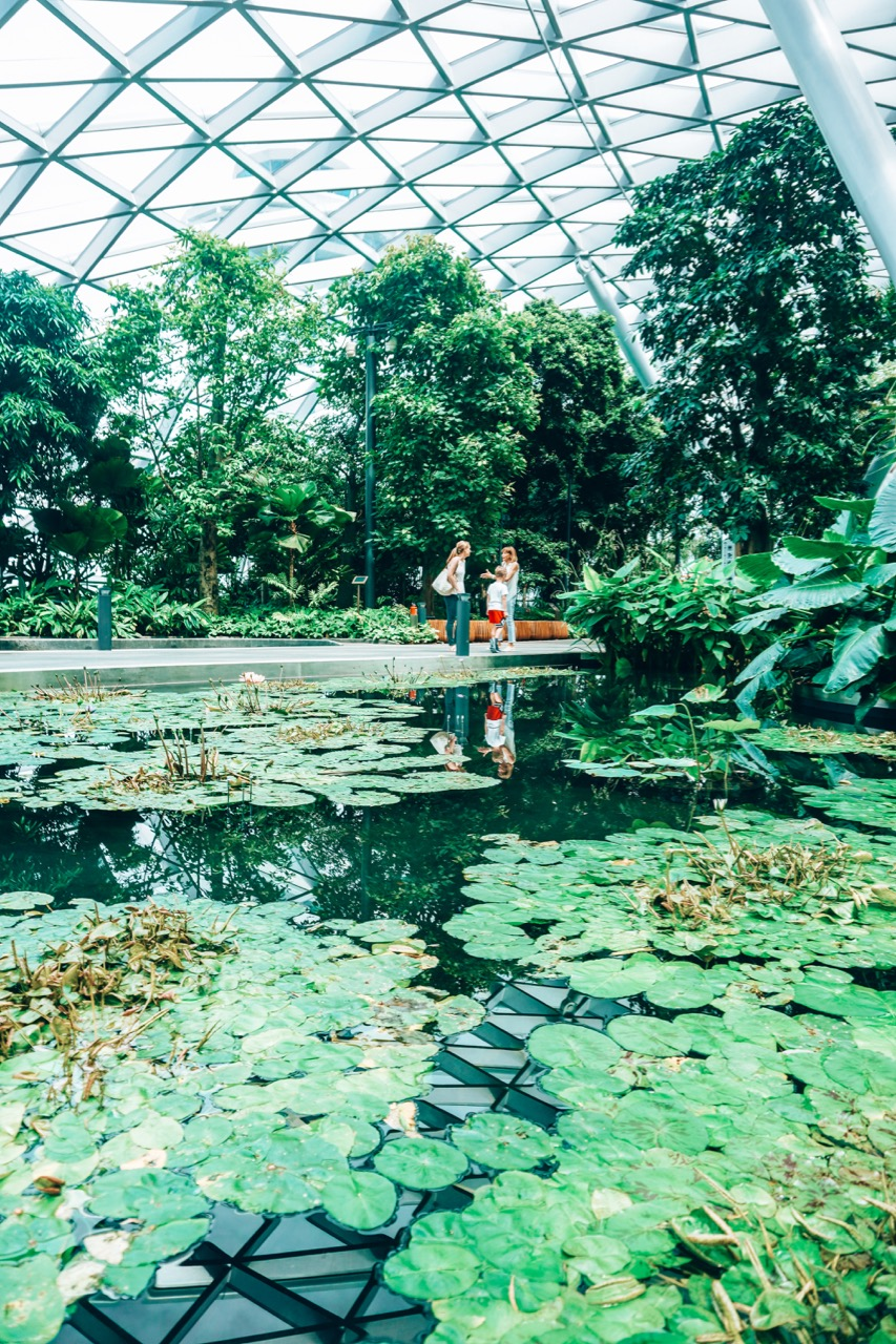 The best guide to visiting Jewel at Changi Airport Singapore - 43