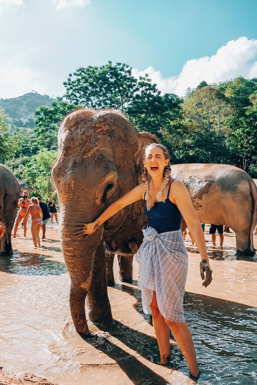 Best things to do in Phuket- Thailand Green Elephant Sanctuary Park - 8